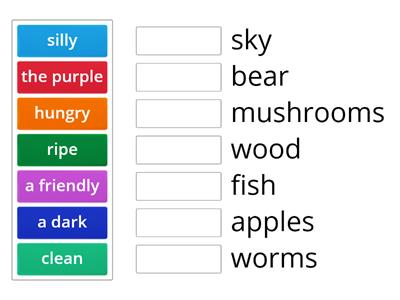 Match the adjectives with the nouns.