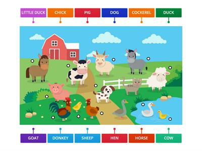 FARM ANIMALS LABELING