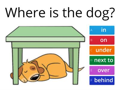 Prepositions - in, on, under, next to, over, behind, in front of