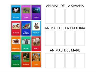 classificazioni animali