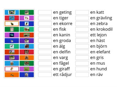 Svenska:  Djur, match pictures to words with indefinite article