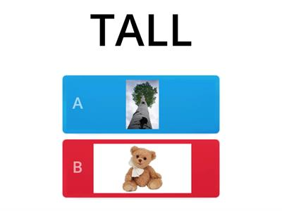UNIT 5 TALL OR SHORT