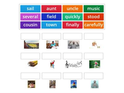 Year 3 Week 5 Matching words with pictures