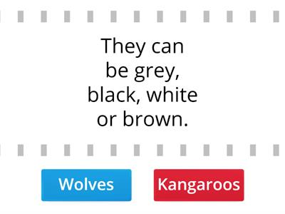 AS2 U1 Wolves VS Kangaroos