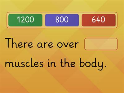 Muscular System Fill In the Blank