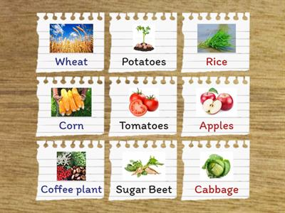 Foods That Might Grow Activity