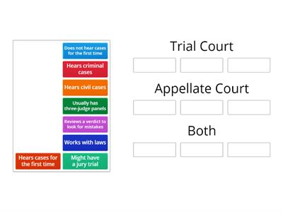 Trial vs Appellate Courts