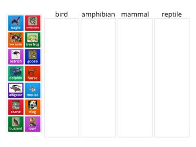 Animal Classification Group Sort