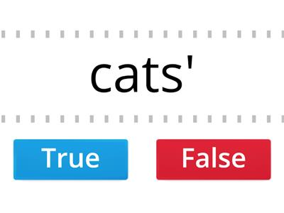 True or false plural possessive nouns