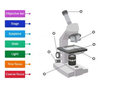 Label A Microscope Teaching Resources