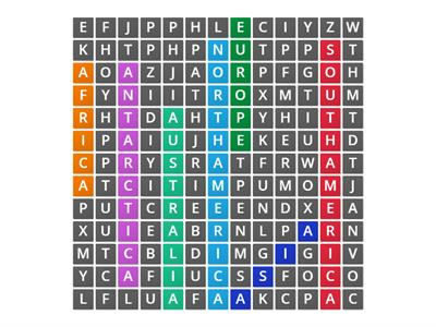 CONTINENTS WORDSEARCH