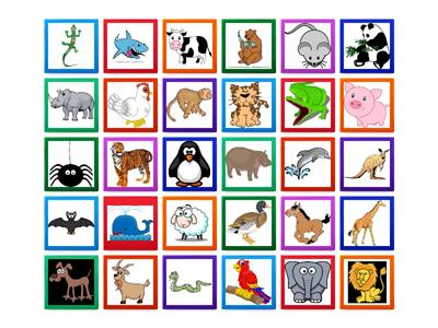 Animals Flip Cards