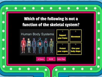 The Human Body Game Show