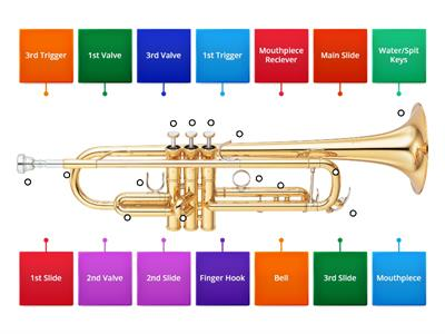 Trumpet Labeling Diagram