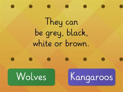 Wolves VS Kangaroos AS2 U1