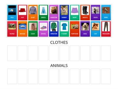 animals and clothes