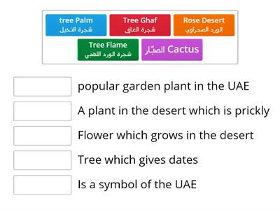 Plants in the UAE
