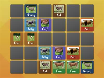 Matching pairs farm animals