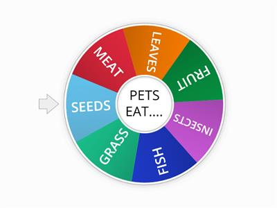 What pets eat?