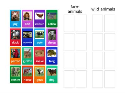 farm and wild animals