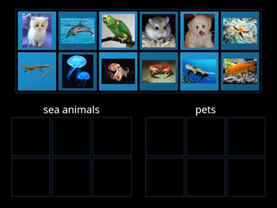 Copy of Sea/Land animals (5-7)