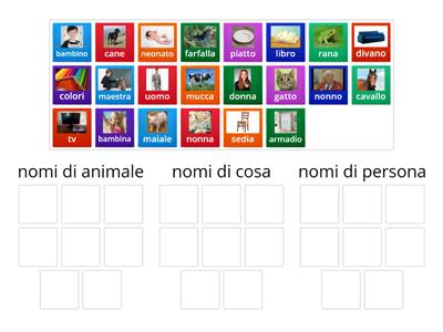 Classifica i nomi di persona,animali,cosa