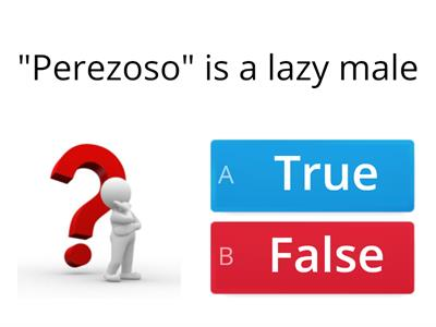 True or False (Personality Y8)
