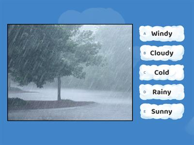 Weather Quiz (Game)