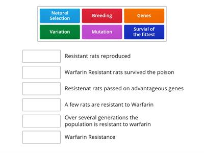 Warfarin Resistance in Rats