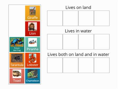 Living things group sort two