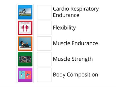 5 components of Fitness Matching Game