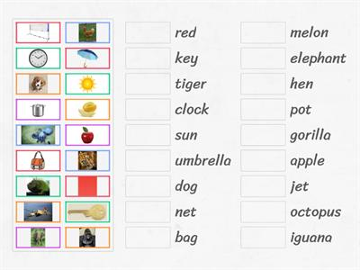 Picture word match UAE Phonics Revision