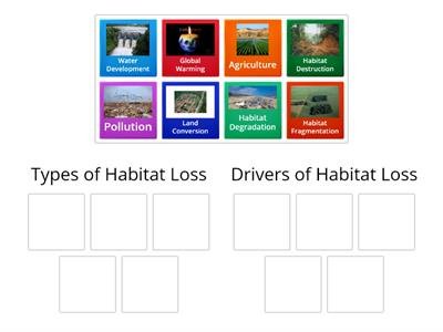 Habitat Loss Closing
