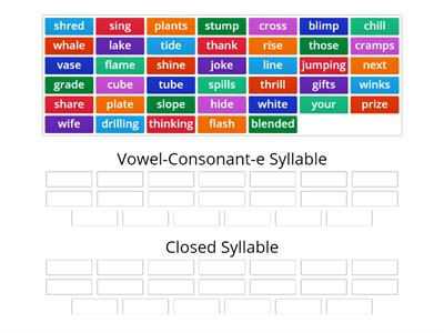 Fundations Unit 11: Syllable Sort