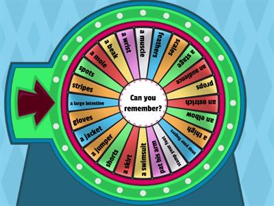 revision wheel