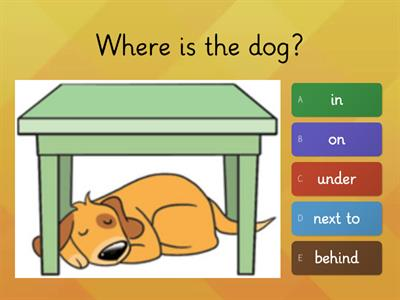 Prepositions - in on under next to over