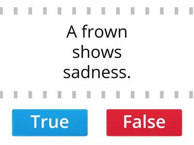 True of False Word of the Day Level 2