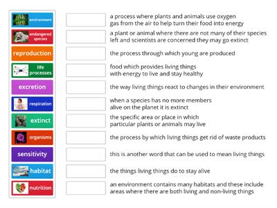 Y4 Science Vocab Quiz