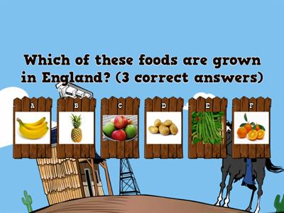 Farm to Fork Quiz