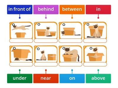 prepositions(on-in-under-near-between-etc.)