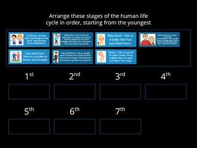 Year 5 Human Growth - Key Knowledge Human Life Cycle