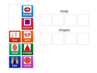body and shapes vocabulary