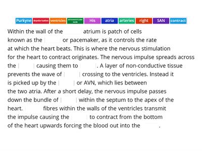 Cardiac cycle transmission of impulse - missing words