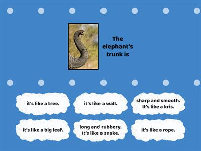 The Six Blind Man and The Elephant: Find the match