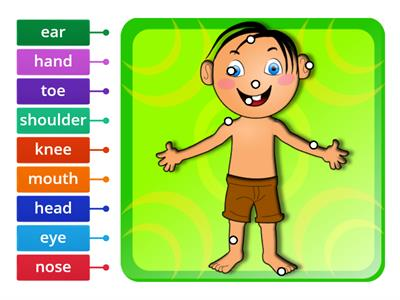 My body parts - ENGLISH YEAR 2 PPKI