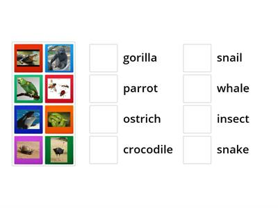 YSp1 L8A animals from WB p.64