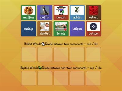 Rabbit or Reptile Syllable Division Rules- Sort2