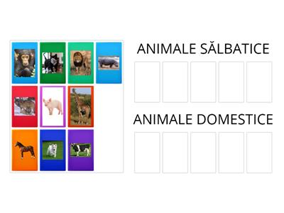 Animale sălbatice și animale domestice