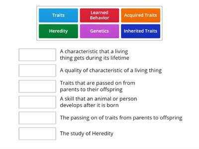 Traits and Behaviors Voabulary Week 1