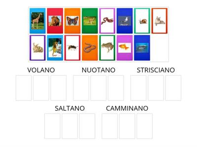 Classifica gli animali in base al movimento